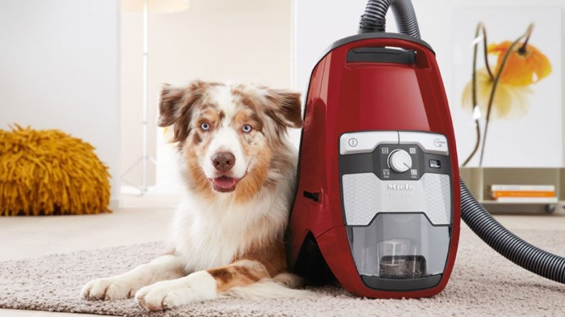 Miele Blizzard CX1 Cat & Dog Vacuum Cleaner 10502220